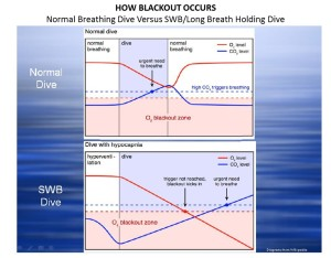 Understanding the difference between a normal dive and a shallow water blackout dive graph. SWB O2 and CO2 Graph
